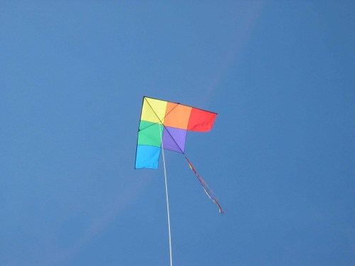 TJ's favorite Delta kite in the Michigan sky