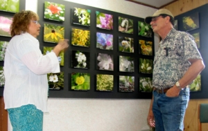My cousin Ellie chats with Harvey in his wildflower photo gallery