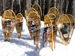 Make your own snowshoes at Michigan State Parks including Hartwick Pines
