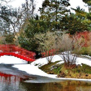 (Dow Gardens photo)